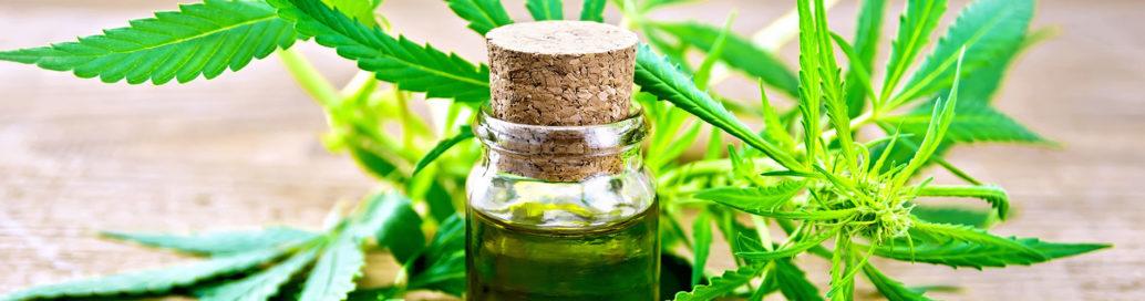 hemp oil CBD oil cannabidiol